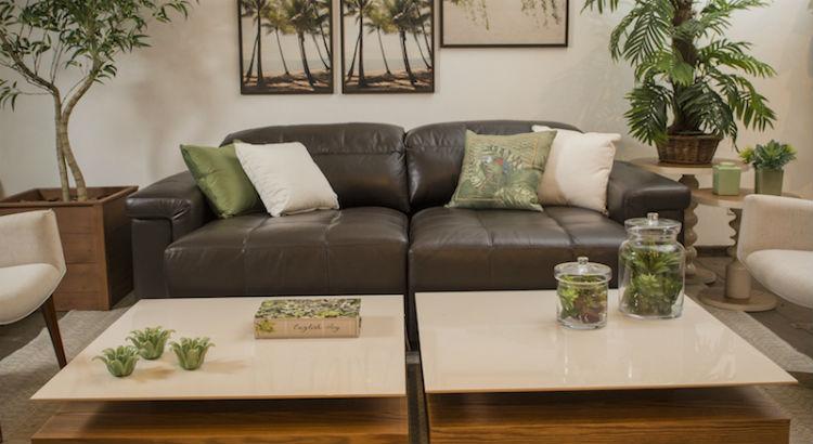 Urban jungle: leve o verde para dentro de casa