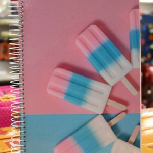 Cadernos estilosos fazem sucesso durante a volta às aulas