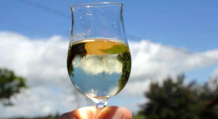 Salão de Bebidas reúne especialistas em cachaça, cerveja e vinho