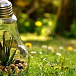 Vida sustentável : como praticar em 11 dicas