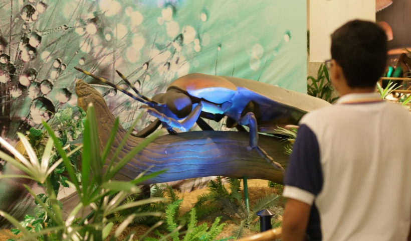 Em visita à Exposição Natureza Gigante, alunos aprendem e se divertem