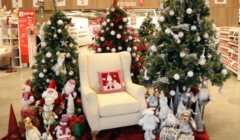 Já escolheu sua árvore de Natal?