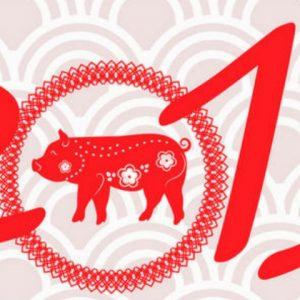 2019 é o ano do Porco! Aproveite a abundância