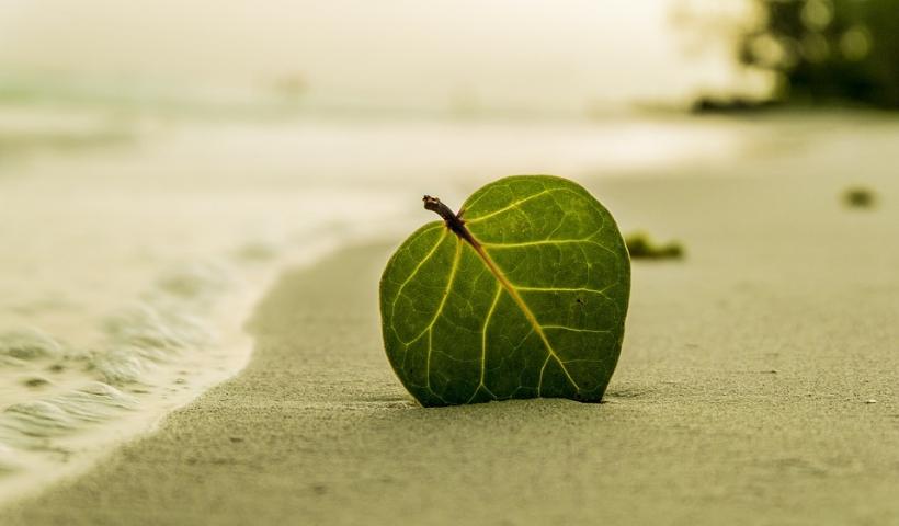 Leve a sustentabilidade também nas suas férias