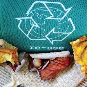 Sustentabilidade: Remodelando Escolhas