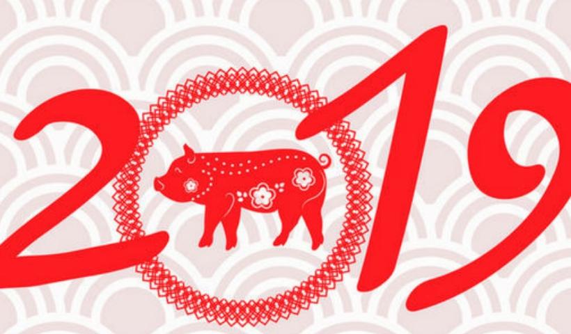 Começa o Ano Novo chinês, o Ano do Porco