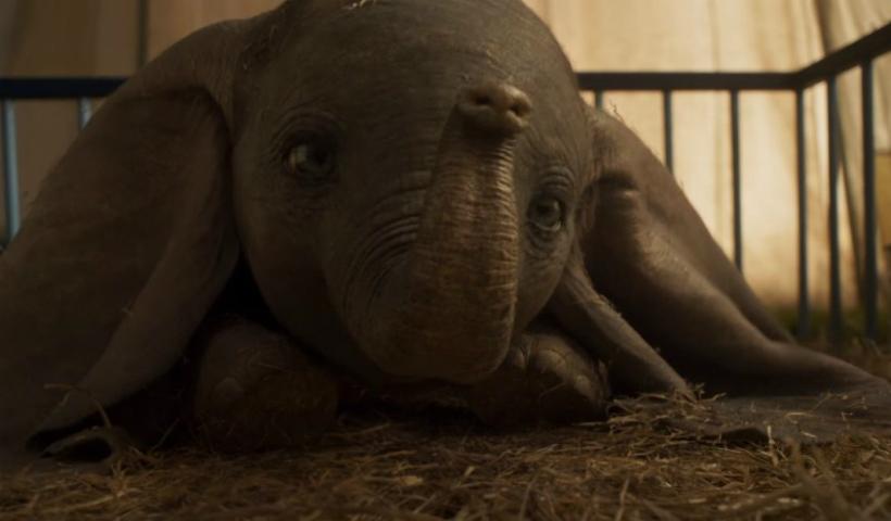 Quinta tem a aguardada estreia de Dumbo, com direção de Tim Burton