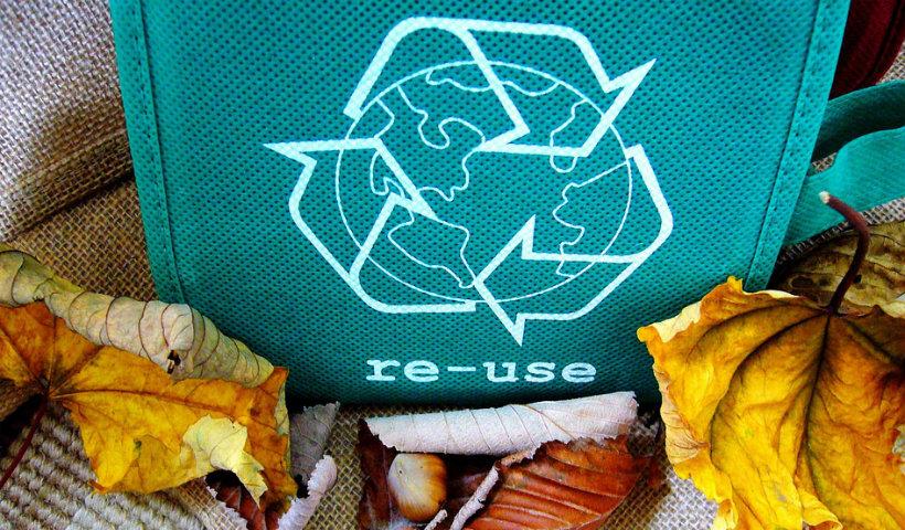Dia Mundial da Reciclagem: O que você pode fazer pelo amanhã hoje?