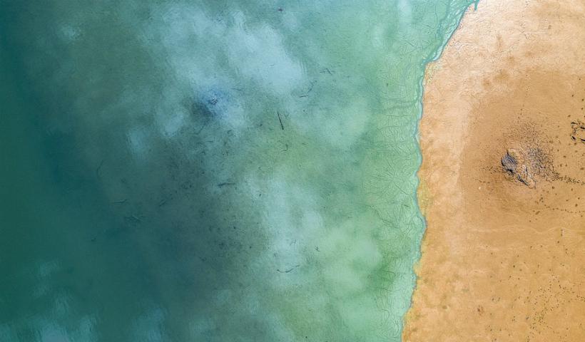 Especial Oceanos: a preservação começa por onde andamos