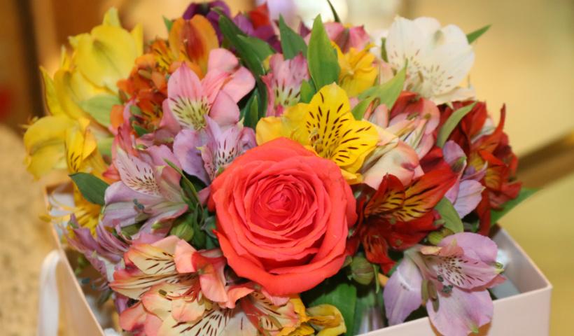 Dia dos Namorados: rosas trazem significado para seu romance