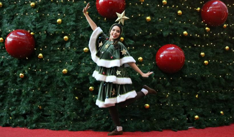 O Pinheiro Falante convida para enxergar a beleza do Natal