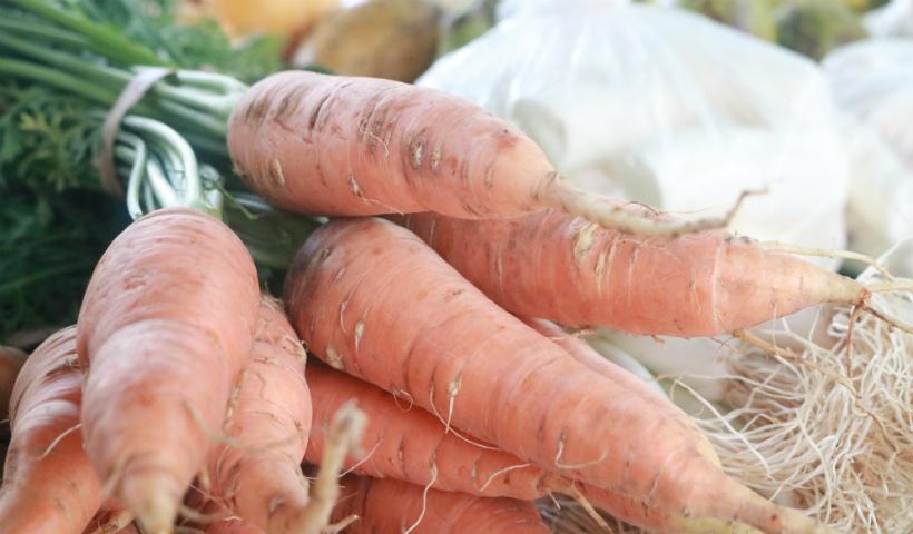 Feira Agroecológica de volta ao RioMar: veja o horário