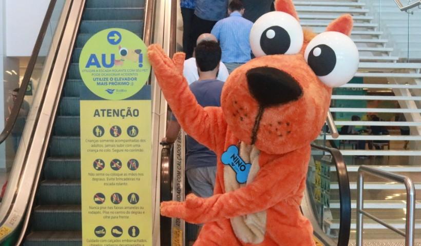 Conheça Nino, novo mascote Pet do RioMar