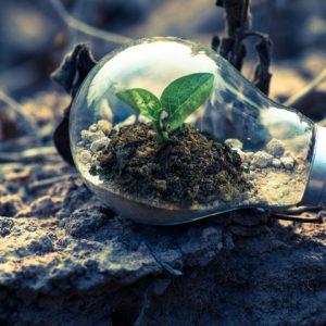Hora do Planeta 2020: é hora de economizar em casa