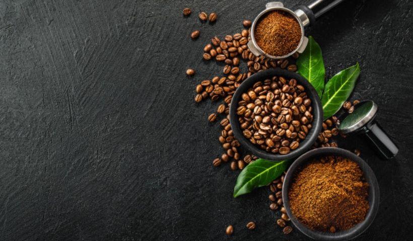Borra de café: saiba quais são as vantagens de utilizá-lo