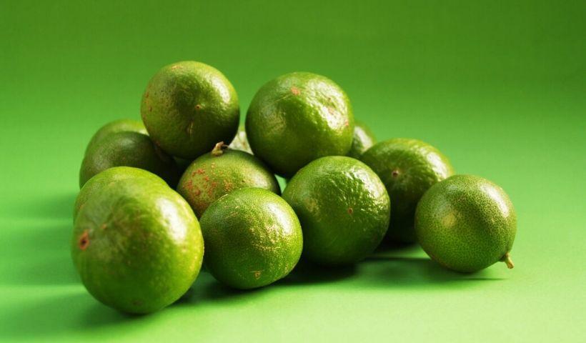Limão: saiba como aproveitar ao máximo os benefícios da fruta