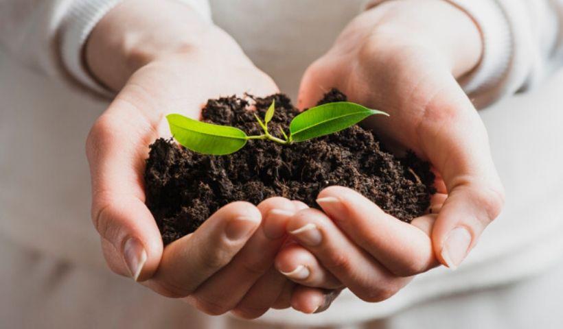 Semana do Meio Ambiente: 10 dicas para ser sustentável