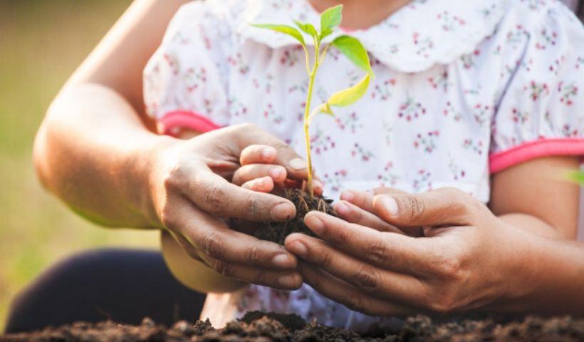 Saiba como estimular práticas sustentáveis na rotina das crianças