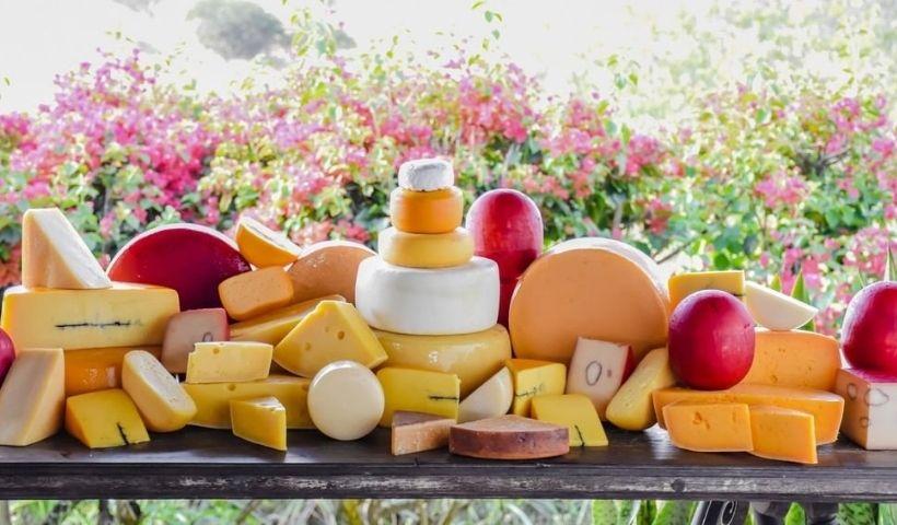 Campo da Serra: veja os 5 queijos mais procurados de lá