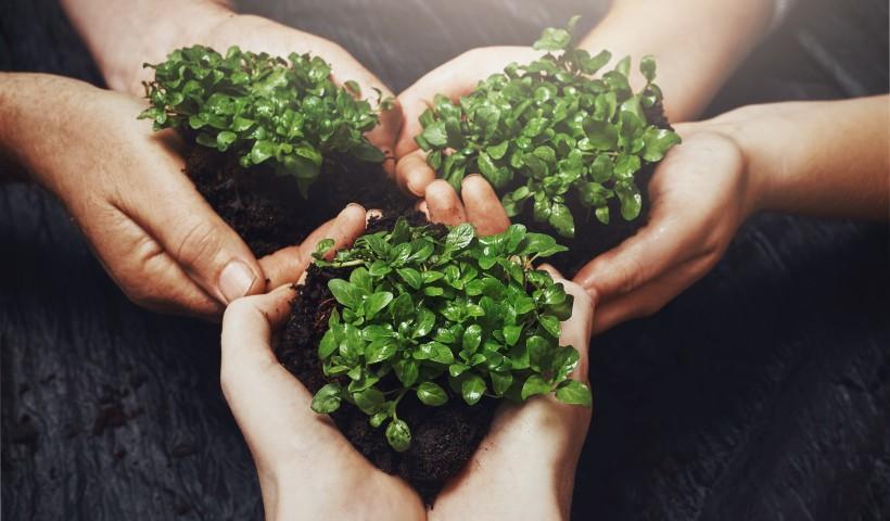Como praticar os Objetivos do Desenvolvimento Sustentável