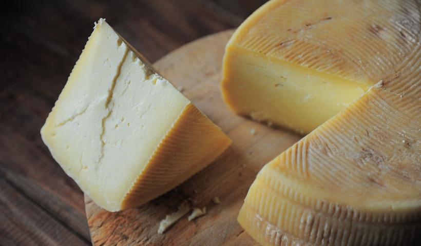 Ama queijos? Veja as opções da Campo da Serra